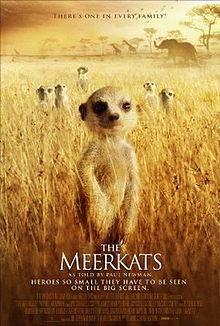 Watch 'The Meerkats'.
