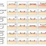 Au sujet des piercings de surface http://soesha.nl Site d'informations sur toutes choses piercing