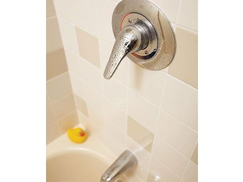 Give old faucets a new look:   New plumbing fixtures give the shower a fast and easy face-lift. Use a shower trim kit when you replace your single-handle shower faucet. These remodeling kits have all the necessary parts—a new handle and wall plate—to update the look of your faucet while leaving the old valve in place. [click photo]