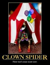 Its a clown and a spider, how could this go wrong? ☺ IN EVERY WAY!!!!!!