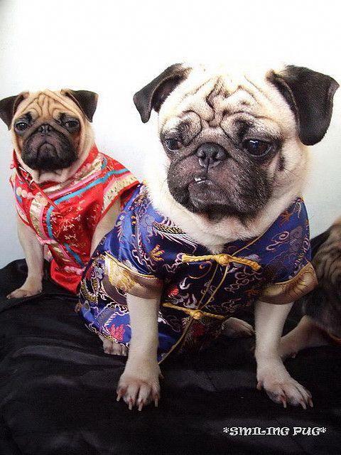 Раскраска халат знатной китаянки