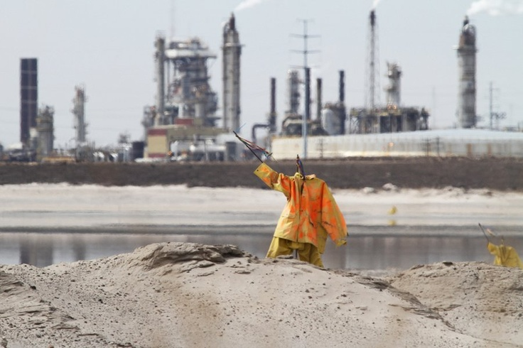 To help keep birds away scarecrows like this are all over the oil sands ponds