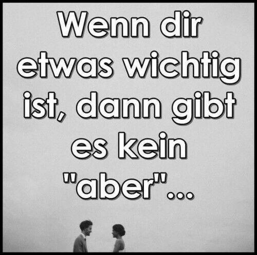 Zitate & Sprüche                                                                                                                                                      Mehr