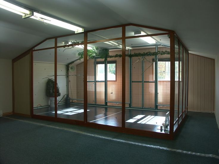 Indoor aviary i would love this for a secret garden type for Build your own garden room