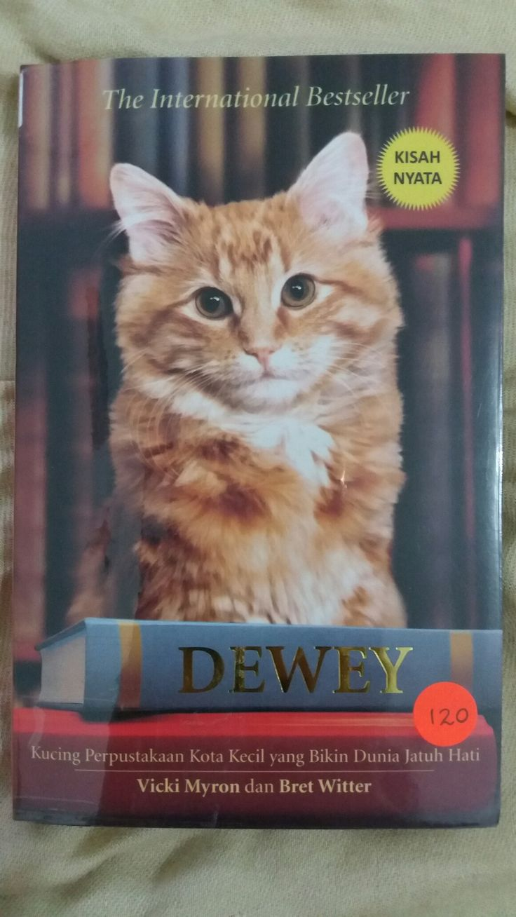 Dewey ✏ Vicki Myron dan Bret Witter