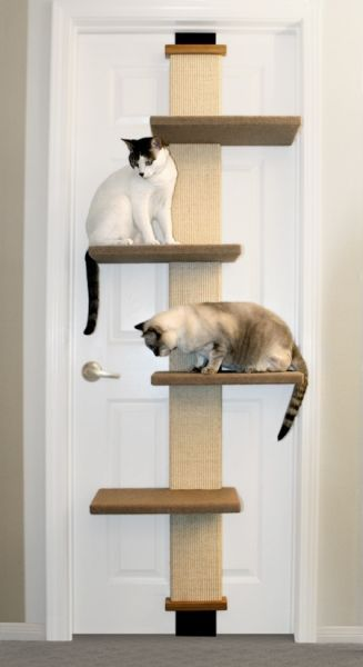 Multi-level climbing platforms.........Why didn't someone think of this sooner? Designed to hang on any standard door in your home, the Cat Climber from SmartCat is the perfect choice for smaller homes or people who don't want to swap an end table for a traditional cat tree. Now your cat can scratch, play, sleep, and exercise safely on this patented product.