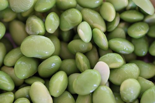 Exploring Health Benefits of Soybeans