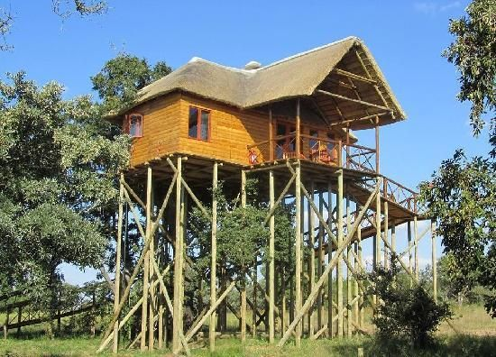 Pezulu Tree House Game Lodge 45 min from Kruger National Park in South Africa