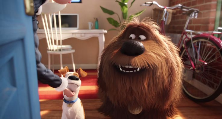 Max is a dog who lives a happy life with his owner in a Manhattan apartment complex - but everything gets disrupted when his owner brings home the sloppy and inconsiderate dog, Duke. See what really happens when you leave your pets at home all day. The Secret Life of Pets now available on Digital HD, coming to Blu-Ray and DVD December 6.