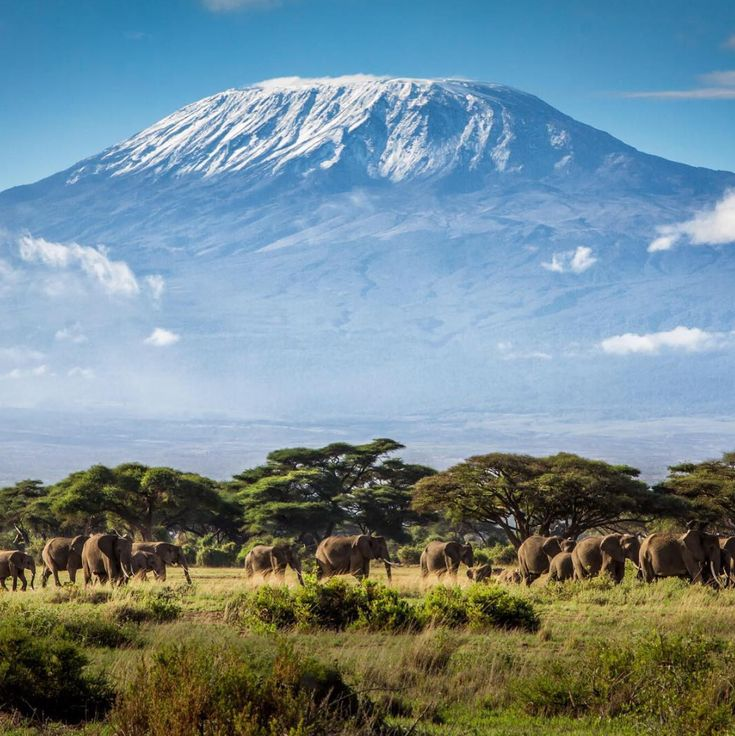 Mt Kilimanjaro Tanzania Topo Rocks Glass