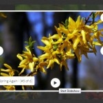 Responsive jQuery Image Gallery with Slideshow without Plugin