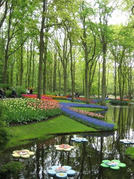 Keukenhof gardens - The Netherlands