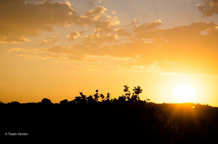Lovely sunrise at Monateng Safari Lodge