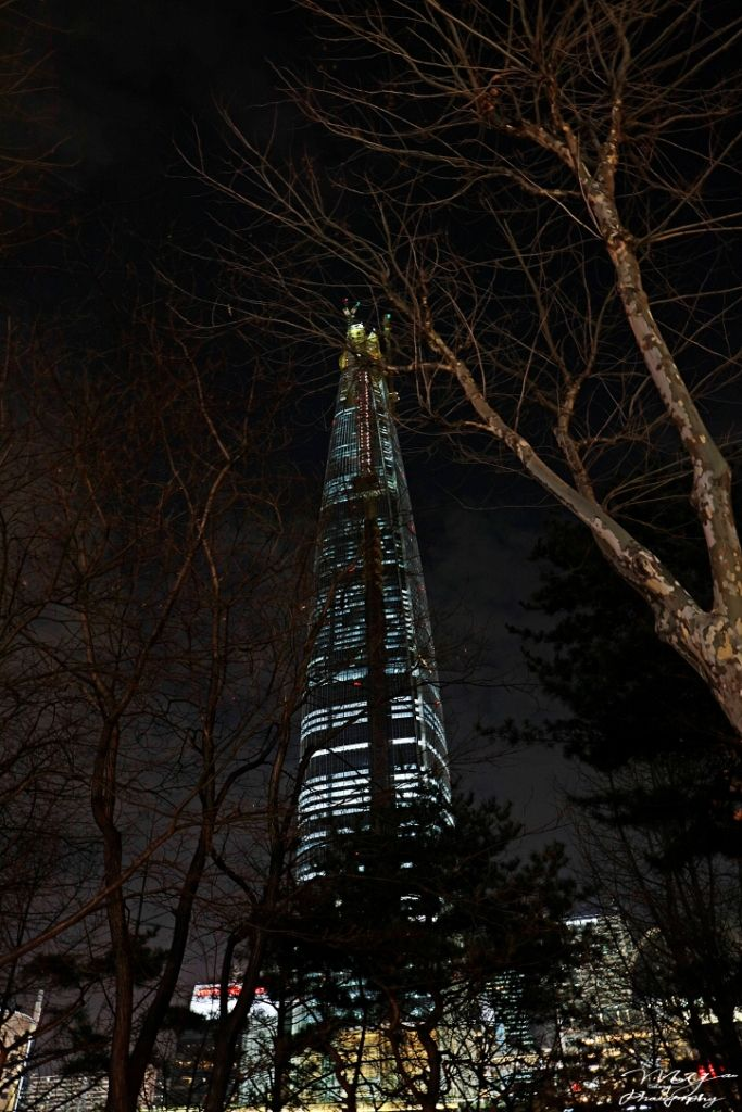 Lotte World Tower ~ Songpa District, Seoul, South Korea