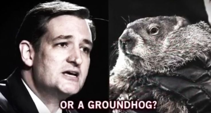 WATCH: Bill Maher trolls climate change-denying Ted Cruz with hilarious Groundhog Day attack ad