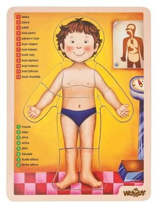 puzzle lidské tělo