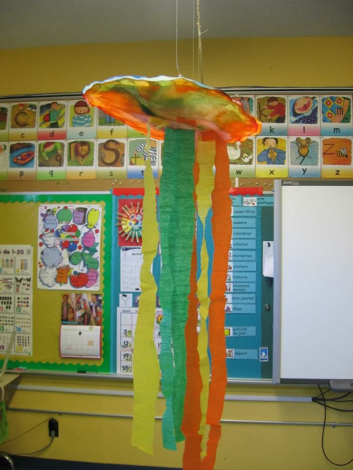 Méduses multicolores