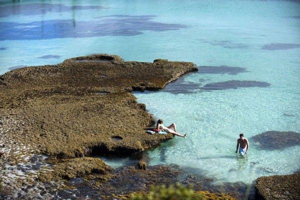 South-Australia-Swimming