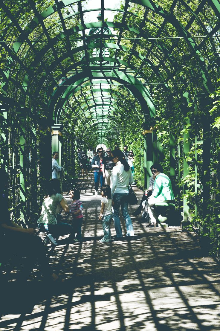 the summer garden, saint petersburg