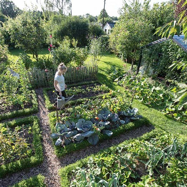 """521 gilla-markeringar, 44 kommentarer - Frau Meise (@fraumeise.de) på Instagram: """"Die Zeit draussen im Garten wird schon sehnsüchtig erwartet! ☀ geht es euch auch so? Bild: ©…"""""""