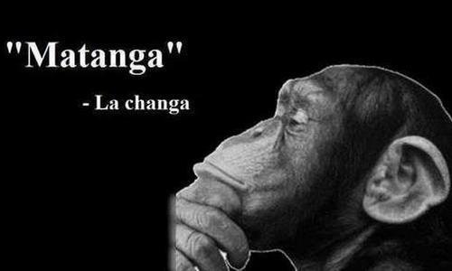 """famoso dicho Mexicano """"Matanga dijo la changa""""... cuando obtienes o arrebatas algo por que fuiste mas listo y mas veloz."""