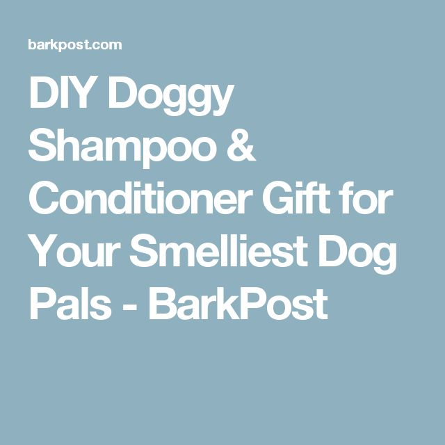 DIY Doggy Shampoo & Conditioner Gift for Your Smelliest Dog Pals - BarkPost