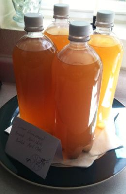 Mead 101 - HOMEGROWN.org << How to make small batch Finnish mead.