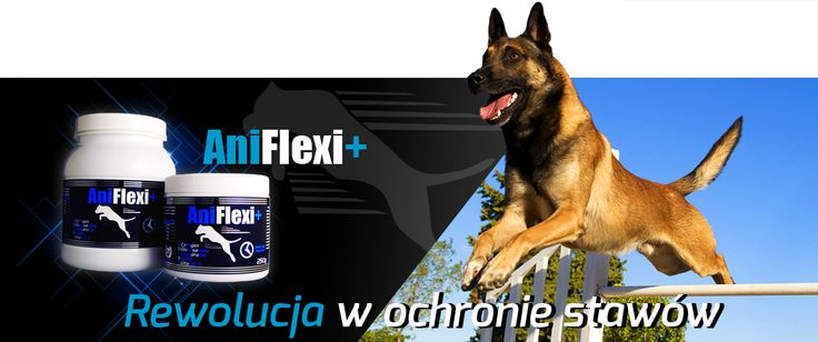 ANIFLEXI + + Includes a therapeutic dose of hydrolysed collagen  +  inhibits degenerative arthritis proceedings  +  nourishes and regenerates joints, ligaments, tendons and bones  +  Reduces pain   + Improves joint mobility and flexibility   www.gamedog.eu