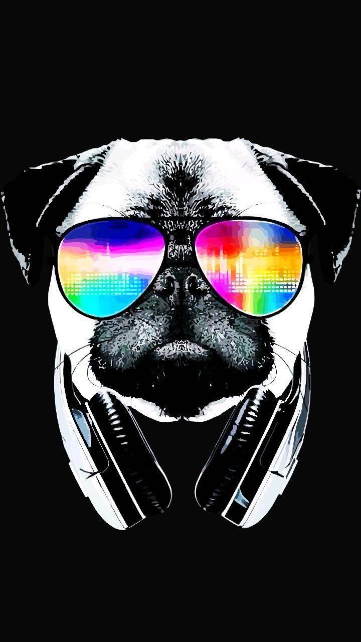Pin By Erin Baliya On Art Cool Backgrounds Wallpaper Dog Wallpaper