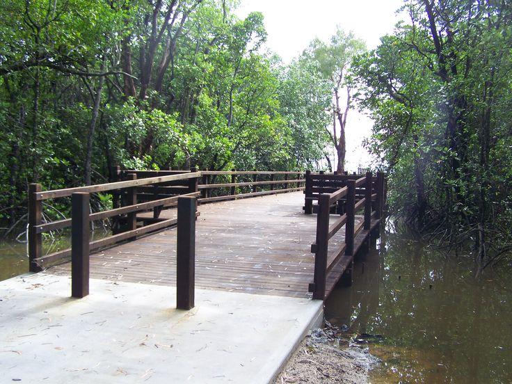 Timber Boardwalks - Cairns
