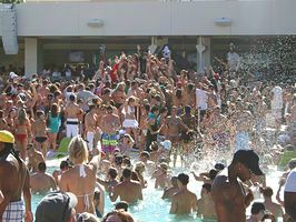 Looking for the best pool parties in Vegas? Look no further, check out our top picks including Rehab at the Hard Rock, Bare at the Mirage, and more.