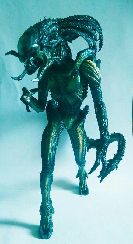 Hybrid Alien, AvPR 2007