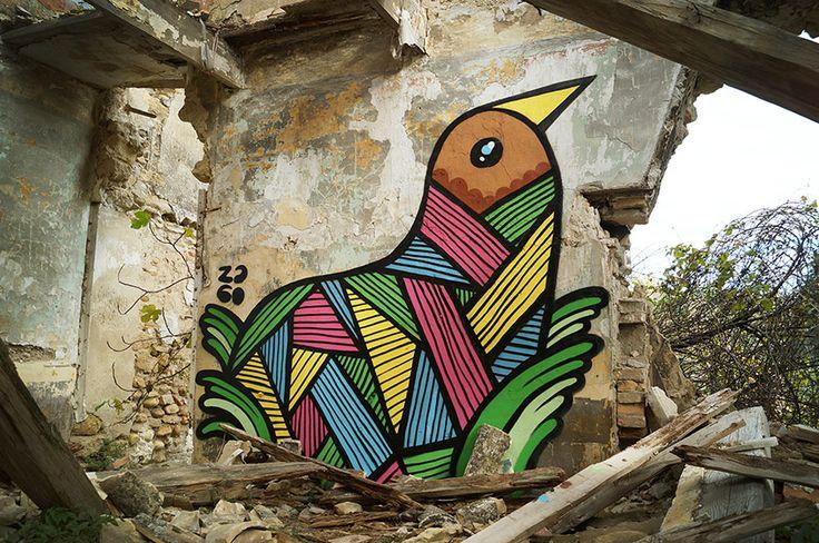 pablito zago | bird | avignon, france