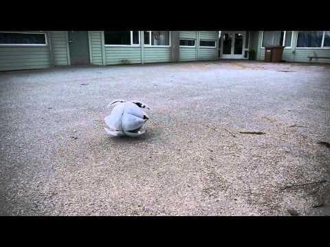 MorpHex, the incredible hexapod robot !