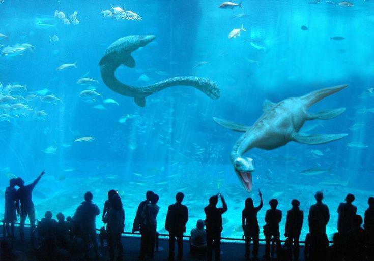 New Monterey Bay Aquarium Exhibit Plesiosaurs Pliosaurs And The Loch Ness Monster Ooohhhh