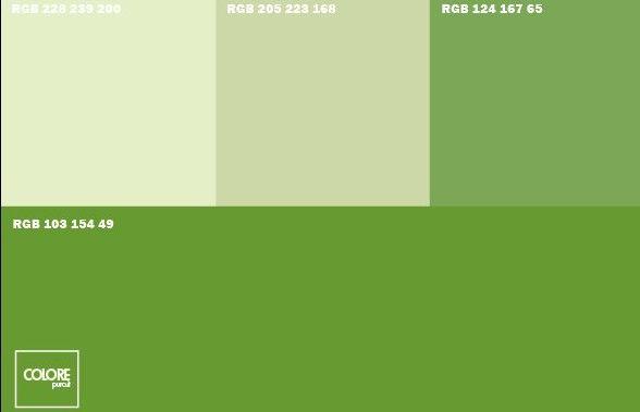 Abbinamento diverse tonalità di verde