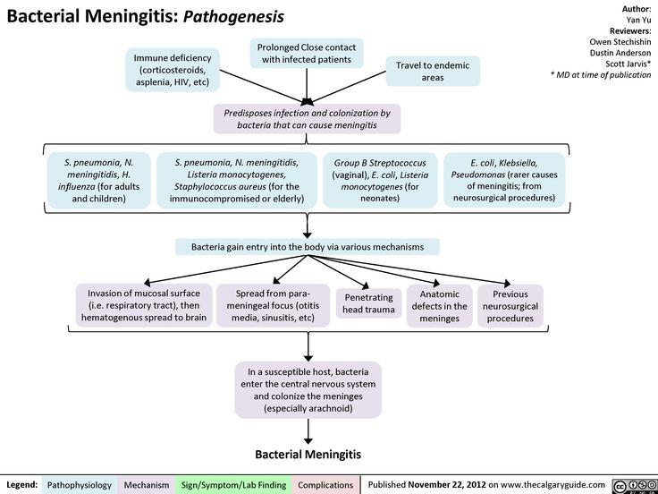 The best way can be virus-like meningitis treated?