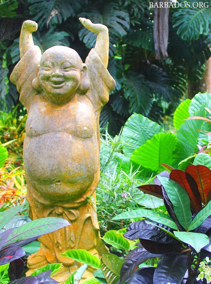 Enjoying life at Hunte's Gardens in beautiful Barbados.