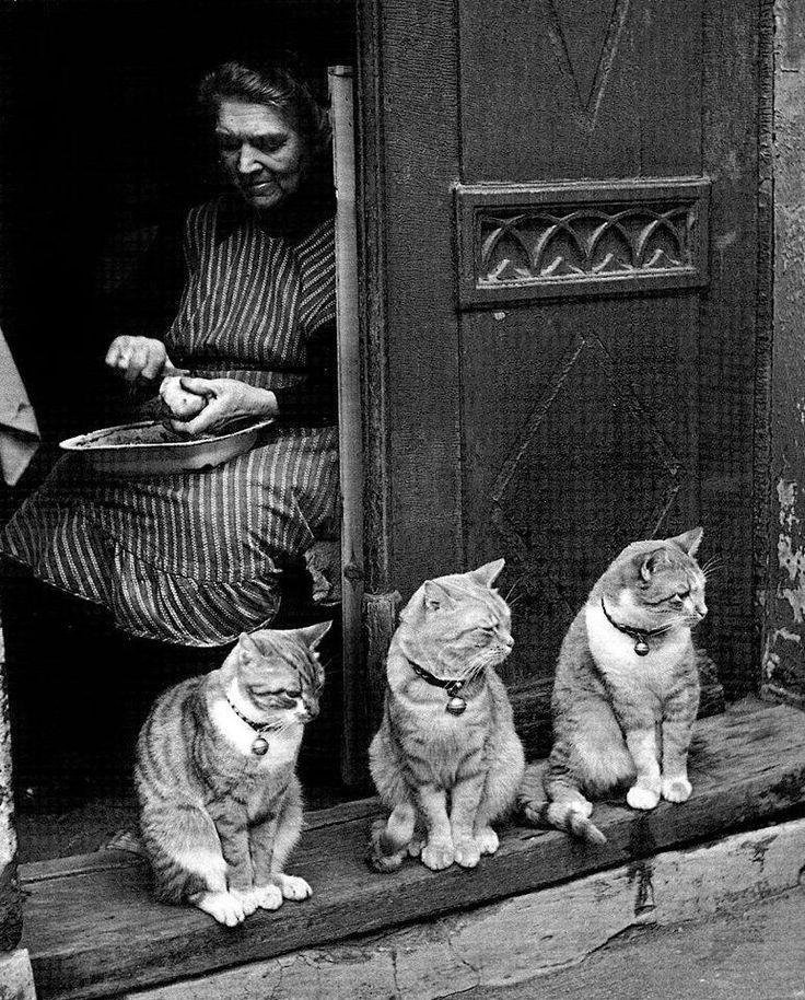 © Toni Schneiders, Familienbild, Lübeck, 1950.