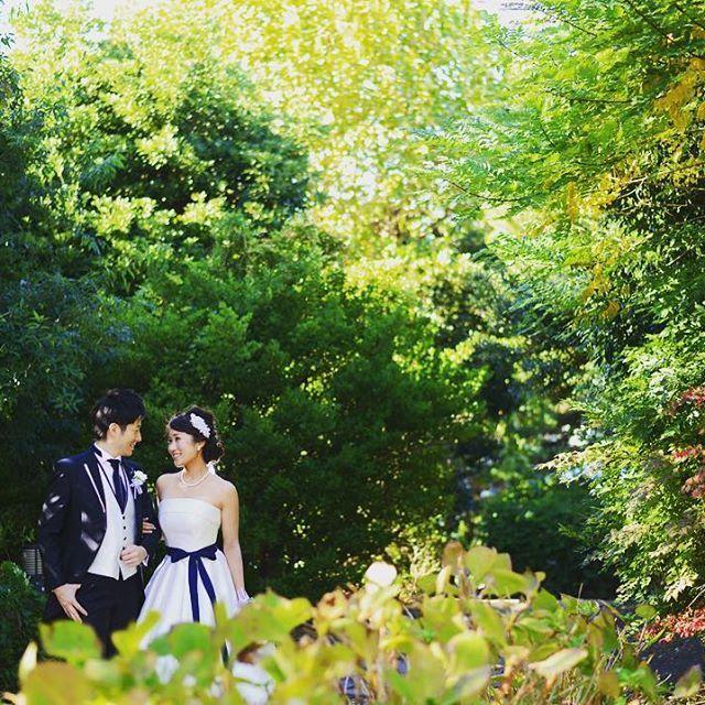 【mimimiisa_wedding】さんのInstagramをピンしています。 《木々が紅葉しだした頃🍂✨ 赤、黄、緑に白いドレスが映えます💎💓 * #2017春婚 #プレ花嫁 #日本中のプレ花嫁さんと繋がりたい #ウェディング #結婚式 #結婚式準備 #前撮り #前撮り指示書 #洋装前撮り #フォトウェディング #ウェディングドレス #ドレス #サッシュベルト #森 #紅葉 #marry花嫁 #第6期ウェディングソムリエアンバサダー #ちーむ0319 #ヒルトン東京お台場花嫁 #ホテルウェディング #wedding》
