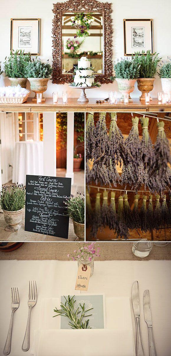 As 25 melhores ideias de plantas aromaticas de interior no for Plantas aromaticas interior