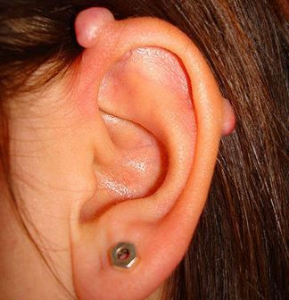 17 best images about ear piercings on pinterest industrial bars industrial bar earring and. Black Bedroom Furniture Sets. Home Design Ideas