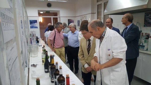 Un total de 110 muestras de Jumilla, Bullas y Yecla se unen al proyecto nacional 'huella dactilar' del vino