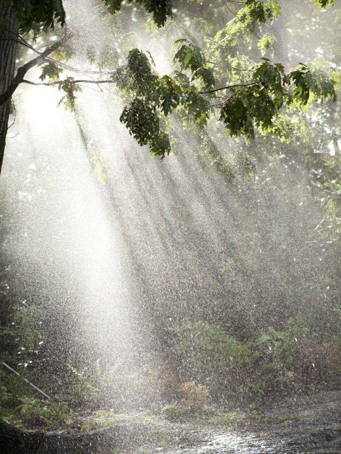 Картинки с дождиком летним