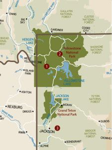 Top 3 Trails for Hiking with Kids in Yellowstone