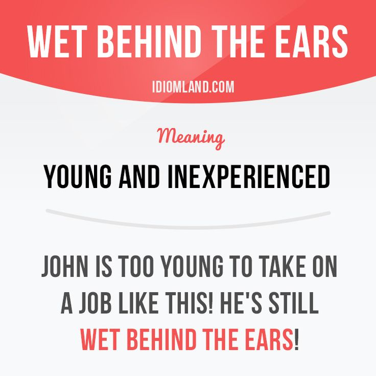 Idiom: wet behind the ears