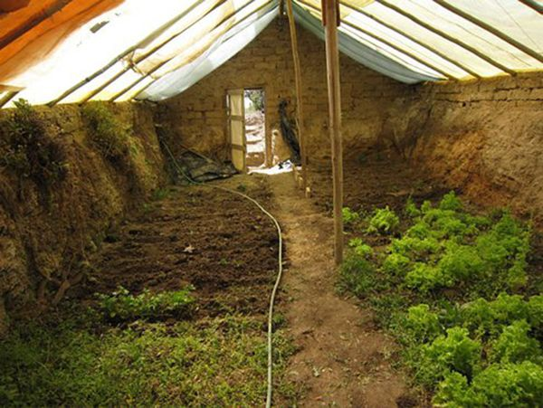Great under ground green-house uses natural geothermal heating/cooling.  If I ever have a yard of my own, I'm doing it.