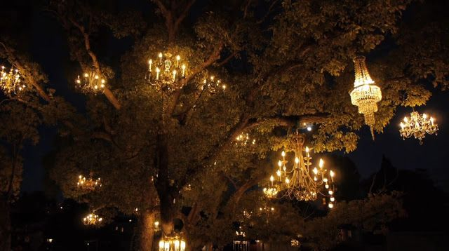 pretty ! Adam Tenenbaum's chandelier tree