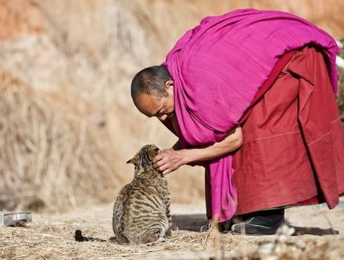 """Consider others as yourself."" -The Dhammapada"