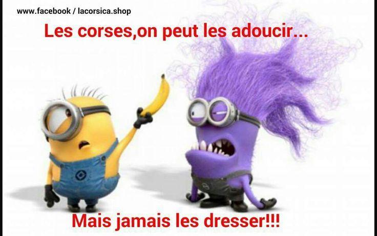 24 besten Minions Bilder auf Pinterest | Lustiges, Minion humor und ...
